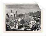 Rome: Excavations in the Forum Romanum by Anonymous