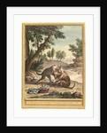 Le Chien Qui Porte a Son Cou Le Diner De Son Maitre (the Dog Carrying His Master's Supper) by Anonymous