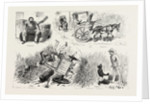 Experiences of a Traveller in an Indian Country Cart by Anonymous