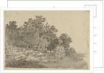 Forest view by Remigius Adrianus Haanen