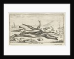 Gars on the beach by Lodewijk XIV