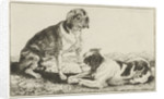 Two resting dogs by Jan van den Hecke I