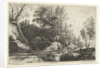 Horses and cows at a watering hole by Frans van den Wijngaerde