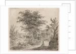 Wooded Landscape with seated figure by Johannes Christiaan Janson