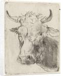 Ox head, left by Pieter Janson