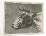 cow by Johannes Janson