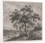 Landscape with a big tree by Johannes Pieter van Wisselingh