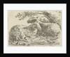 Two sheep by Monogrammist PVB