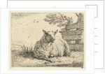 Sheep on a fence by Karel Dujardin