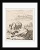Two horses by Karel Dujardin