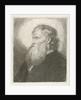 Portrait of an old man with beard by Johannes Mock