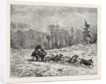 A Siberian Dog Sledge. by Anonymous