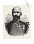 General Felix Douay, 1816 - 1879, French Army by Anonymous