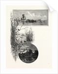 Duck Shooting, Long Point (Top); Club House (Bottom), Canada by Anonymous