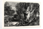 In the New Forest, Near Lymington by Anonymous