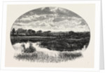 A Norfolk Broad by Anonymous