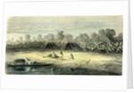 Banana Trees 1869 Peru by Anonymous
