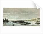 Apu-Paro River 1869 Peru by Anonymous