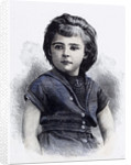 Girl in 1892 by Anonymous