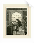 Washington, the Library of the White House, 19th Century, America by Anonymous