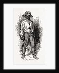 Georgia, A Greene County African-american, 1880 by Anonymous