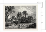 Farm in the Regent's Park, 1750 by Anonymous