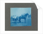 Man and a woman in a carriage with horse, USA by Anonymous