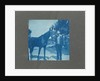 Man holds horse by the reins, United States, USA by Anonymous