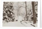 snowy forest by Henry Pauw van Wieldrecht