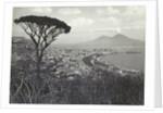 Napoli panorama, Italy by Giorgio Sommer