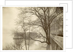 Flooded Seine River with trees, boats and public during flooding of Paris, France by Anonymous