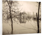 Houses in flooded suburb of Paris seen through bare trees, France by Anonymous
