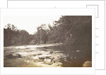 Dutch East Indies, indonesia, River Deli Tuva by Anonymous