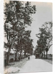Dutch East Indies, towards Penjaboengan by Indonesia Anonymous