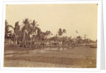 Dutch East Indies, the beach in Ampenan with soldiers, Lombok Expedition 1894, Indonesia by Anonymous