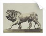 Colossal Bronze Lion. Miller by C.M. Ferrier & F. von Martens