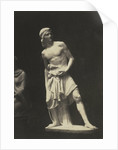 David. (Marble) Fraccaroli by Anonymous