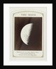 Crescent Moon, Warren de la Rue by Beck & Beck Smith