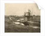 Landscape with bridge (Where Winds the Dyke) by Peter Henry Emerson