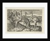 Crowned Crane between two ostriches by Claes Jansz. Visscher II