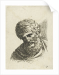 Bust of a man with curly hair and beard by Anonymous