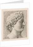 Portrait Bust of a man to the right by Augustinus Terwesten I