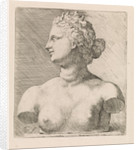 Bust of Venus de 'Medici, in profile to the left by Augustinus Terwesten I