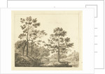 Forest trail in hilly landscape by Johannes Franciscus Christ
