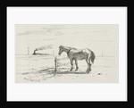 Horse in a pasture, Henry van Ingen by Joseph Hartogensis
