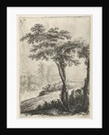 trees on the side of the road by Willem de Heusch