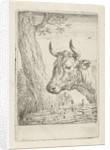 Cow at a willow fence, Aert Schouman by Paulus Potter