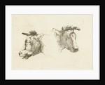 Two heads of cattle by Gerard Bilders