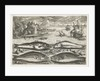 Four fish on the beach by Adriaen Collaert