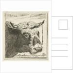 Cup bull rope hear by Cornelis Bisschop